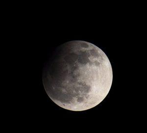 Serate astronomiche alla Specola @ Specola Cidnea | Brescia | Lombardia | Italia