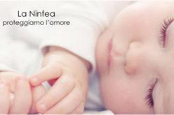 La Ninfea