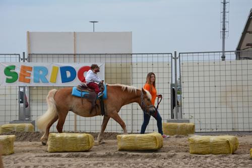 serido-cavallo