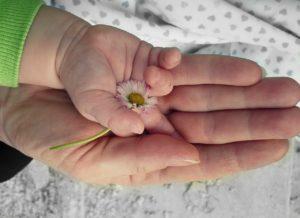 Crescendo insieme - Ottobre @ Associazione Il Club | Palazzolo sull'Oglio | Lombardia | Italia