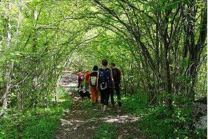 Nordic Walking al Monte Corno @ ritrovo park Centro sportivo S.Filippo | Brescia | Lombardia | Italia