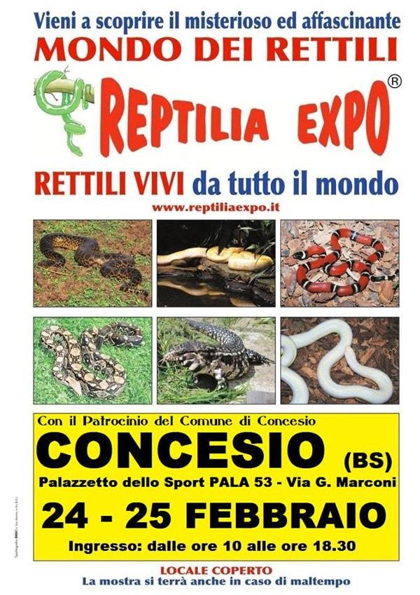 Reptilia Expo a Concesio @ Palazzetto dello Sport  PALA 53 | Concesio | Lombardia | Italia