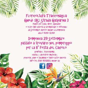 8° festa del Cavolo a Ghedi @ Floricoltura Traconaglia Ghedi | Lombardia | Italia
