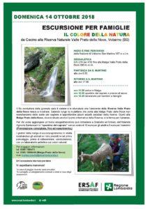 Escursione per famiglie - Il colore della natura @ frazione San Martino Vobarno | San Martino | Lombardia | Italia