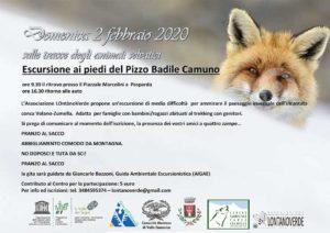 Escursione ai piedi del Pizzo Badile Camuno sulle tracce degli animali @ Paspardo | Paspardo | Lombardia | Italia