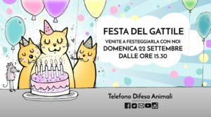 Festa del gattile @ Cascina Grucccione - Capriano del Colle | Cascina Gruccione, Loc. Montenetto, Capriano del Colle | Italia