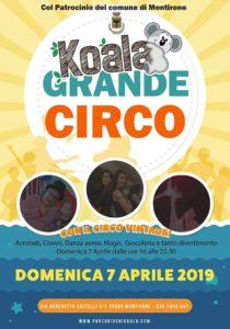 Koala grande circo @ Parco giochi Koala | Brescia | Lombardia | Italia