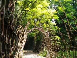 In ascolto a Padernello @ Castello di Padernello | Padernello | Lombardia | Italia