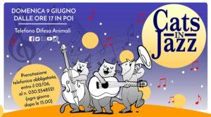 Cats in Jazz - Apericena Sociale