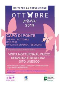 La notturna a Bedolina @ Parco Archeologico Comunale di Seradina-Bedolina | Capo di Ponte | Lombardia | Italia