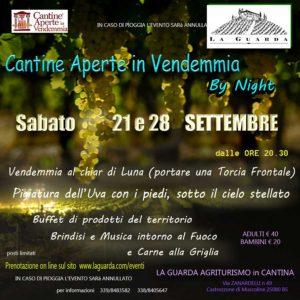 Vendemmia notturna @ Agriturismo La Guarda