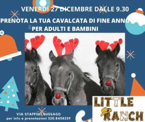 Cavalcata di fine anno al Little Ranch @ Little Ranch | Lograto | Lombardia | Italia